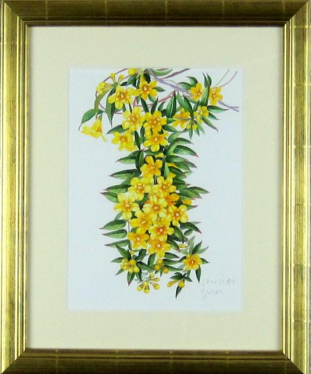 花の絵・ 志村好子 「ほのかに香る」黄色ジャスミン 水彩 4号 外寸500×411mm