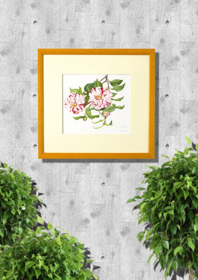 椿の絵・志村好子「花の笑み」水彩・4号 額寸456×421mm